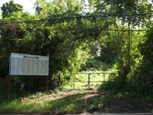 El lugar donde una vez estuvo la casa donde yo nací (Barrio Ceiba Norte, Juncos, Puerto Rico; diciembre de 2007).